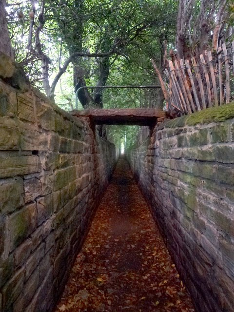 ginnel woodhouse ridge.JPG